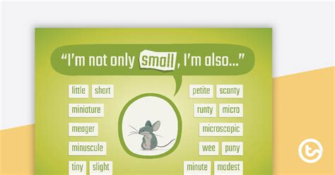 Small Synonyms Poster Teaching Resource | Teach Starter