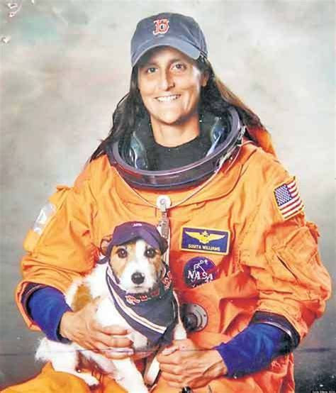 National Pet Day Puts Astronauts' Pets In Spotlight