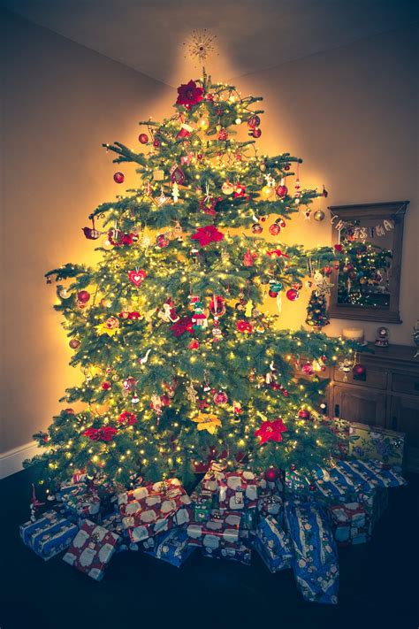 Christmas Tree Free Stock Photo - Public Domain Pictures