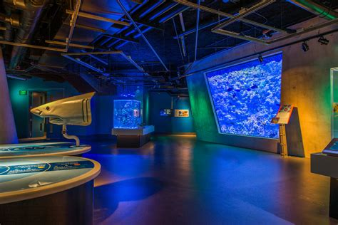 The Phillip and Patricia Frost Museum of Science | Miami